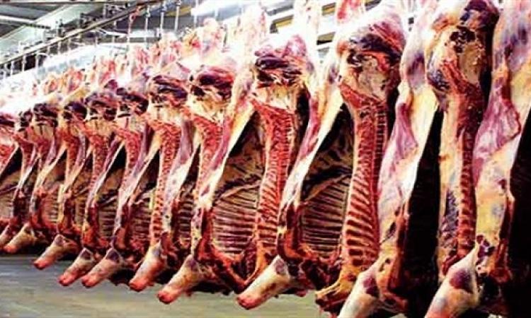 القوات المسلحة تطرح 43 طنا من اللحوم استعدادا لعيد الأضحى بالقليوبية