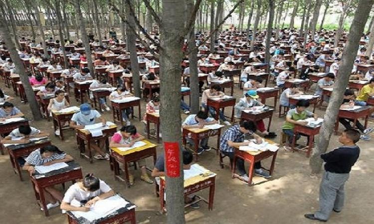 الصين تحارب الغش بامتحانات فى قلب الغابة.. ايه الرعب ده؟!