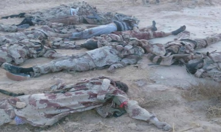 الجيش ينشر صور جثث الإرهابيين المشاركين فى هجمات الشيخ زويد