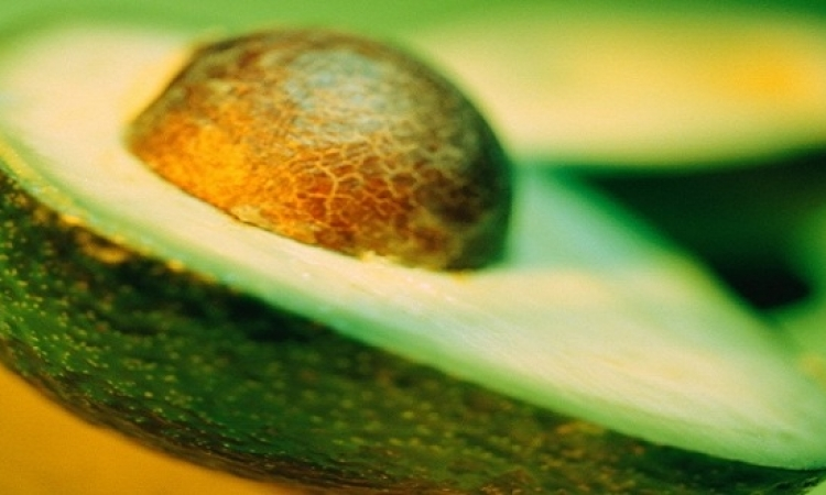 الأفوكادو تعتبر علاجاً رائعاً للشعر الجاف أو المجعد