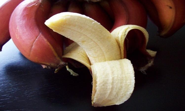 ما لا تعرفه عن الموز الأحمر