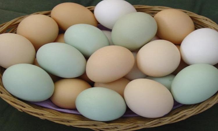 البيض واللبان وزيت السيارات.. أعداء البرص