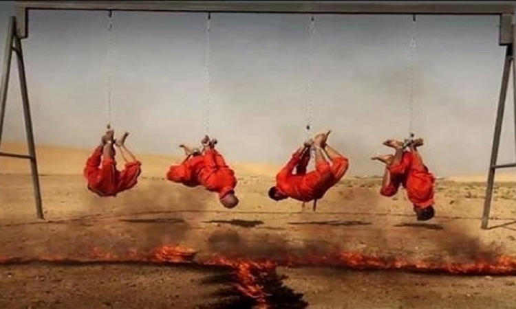 آخر افتكاسات داعش .. الشوى على السيخ .. زى الخرفان !!