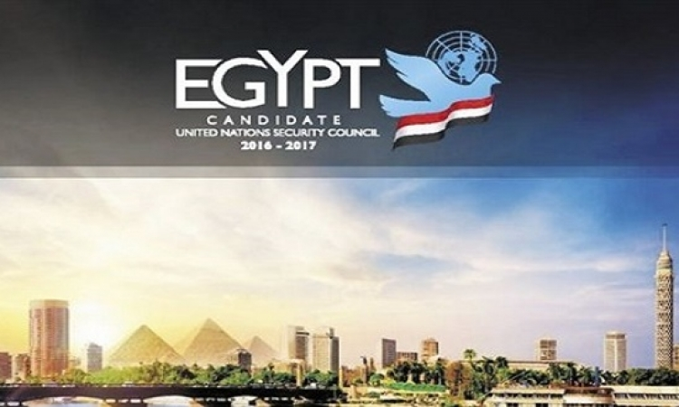 هل ستحصل مصر على عضوية مجلس الأمن قريبًا؟
