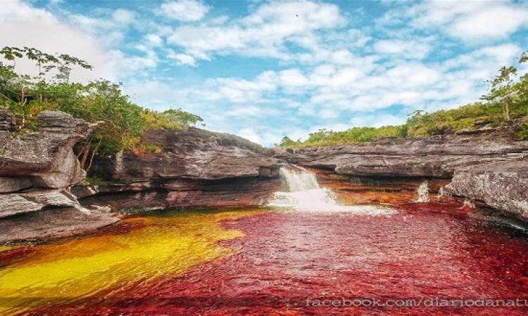 بالصور .. أجمل أنهارالعالم نهر كانو كريستال ذو الألوان الخمسة فى كولومبيا
