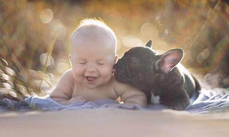 صور مذهلة لرضيع وتؤامه الجرو .. بيعملوا كل حاجة مع بعض !!