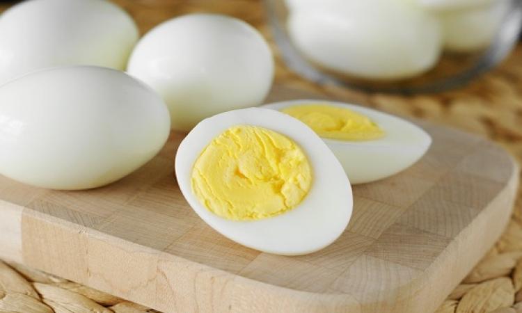 عالم أسترالى يخترع طريقة لإعادة البيضة نيئة بعد سلقها .. آه وهيستفيد إيه بقى؟