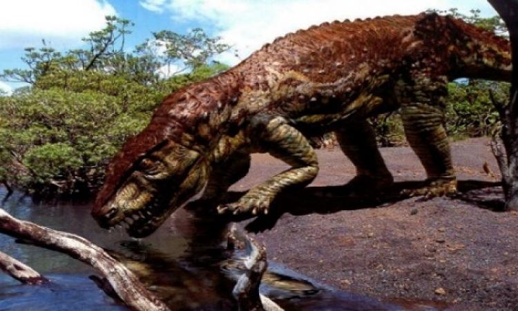 عمال مناجم أستراليون يعثرون على آثار متحجرة لديناصور