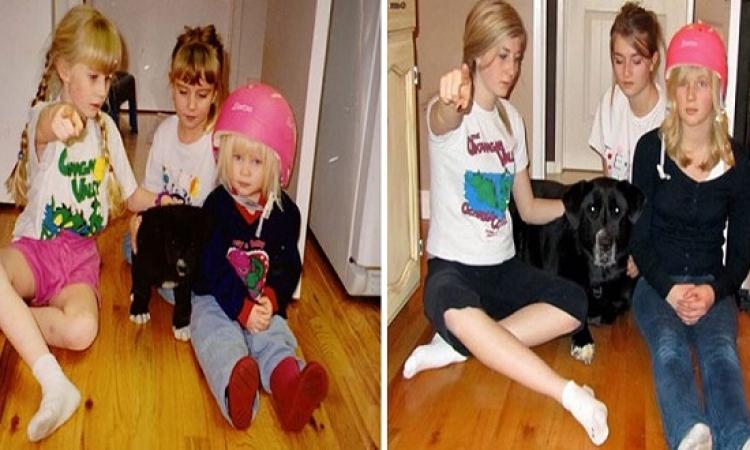 بالصور .. طفولة الكلاب .. شوفهم دلوقتى .. ولما كانوا صغيرين !!