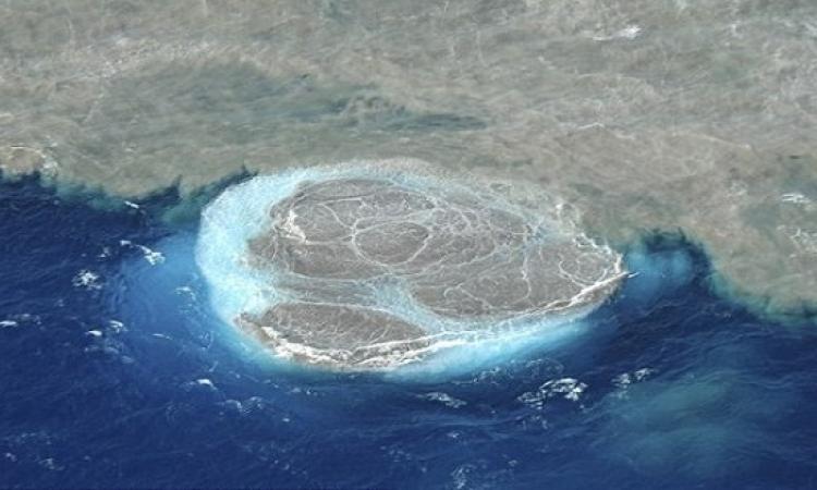 بالفيديو .. ثوران بركان تحت الماء فى جزر الكنارى الأسبانية