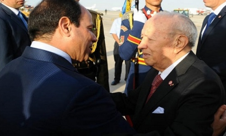 اوضاع ليبيا والعلاقات الثنائية يتصدران قمة السيسى والسبسى بالقاهرة