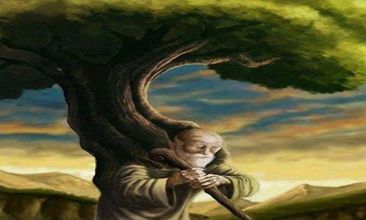 قصة الملك والفلاح .. وشجرة الزيتون !!
