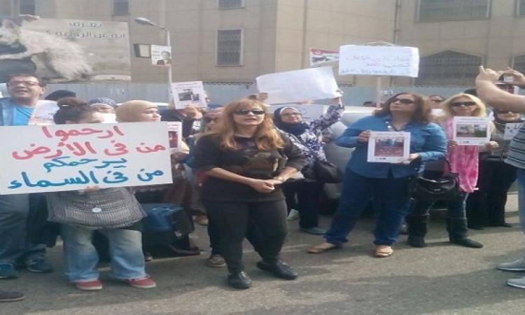 وقفة احتجاجية امام النادى الأهلى للتنديد بقتل القطط