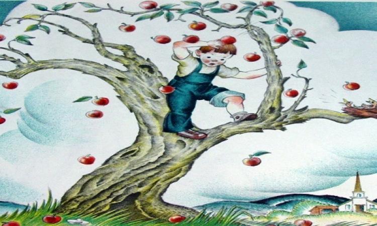 قصة وعبرة .. الولد الصغير وشجرة التفاح الكبيرة