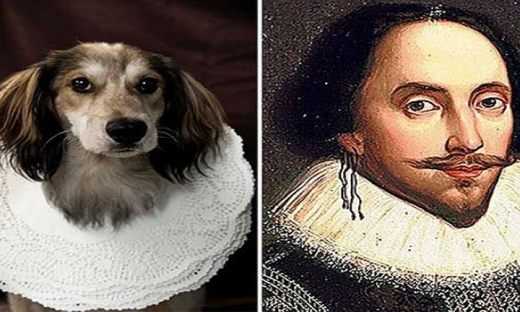 بالصور .. كلاب تشبه أشهر الشعراء والكتاب !!