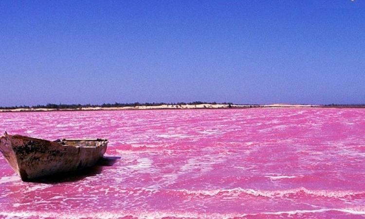 البحيرة الوردية .. روعة الطبيعة وسحر الرومانسية