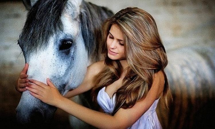 مفاجأة .. الخيول تستطيع تمييز انفعالات الإنسان