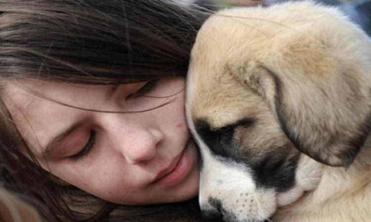 بعد الخيل .. الكلاب قادرة على استشعار أحاسيس الإنسان