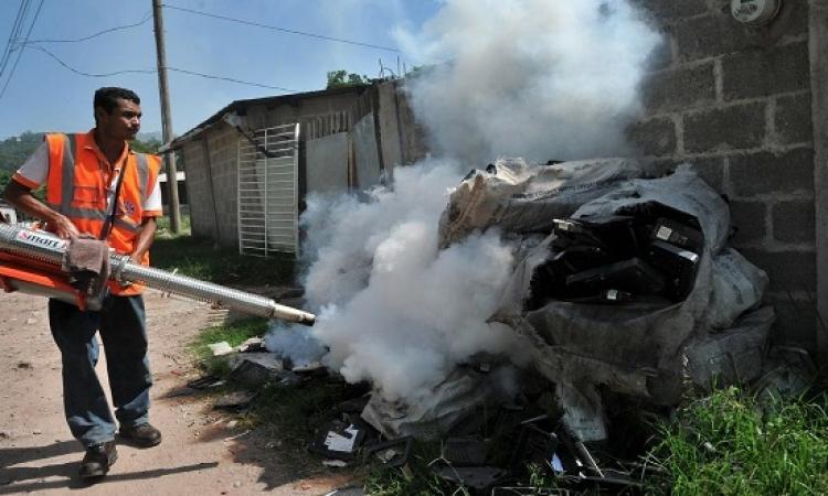 وفاة العشرات جراء الحمى الصفراء فى أنجولا