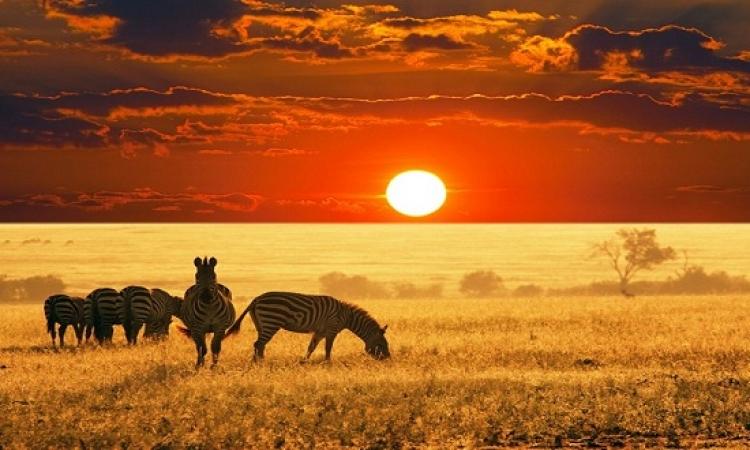 بالصور .. جمال الطبيعة الخلابة فى جنوب افريقيا
