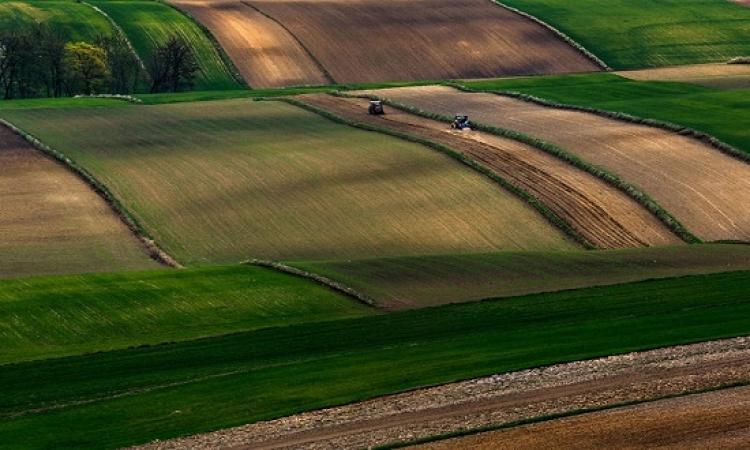 بالصور .. روعة جمال الحقول الاوروبية .. سجاجيد منقوشة !!