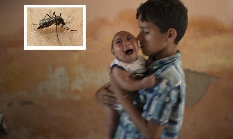 20 معلومة عن الفيروس زيكا .. آكل رؤوس الأطفال