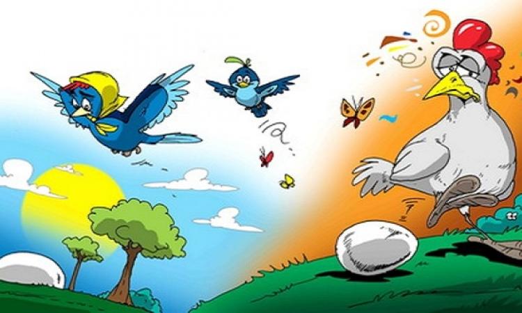 قصة للأطفال .. العصفور الصغير وبيضة الدجاجة