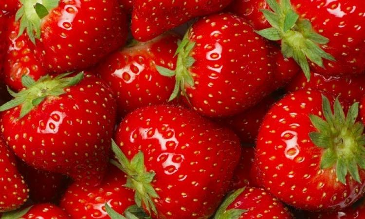 تناول الفراولة بانتظام يساعد على الوقاية من السرطان
