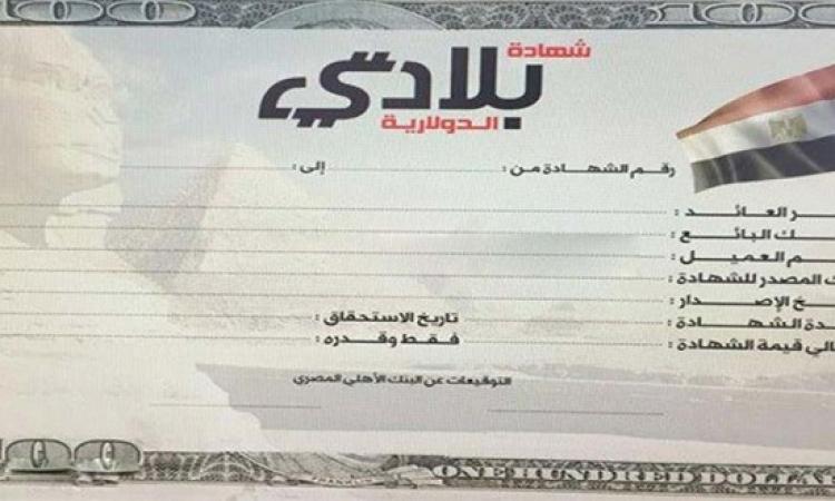 بالفيديو .. البنك الأهلى : عائد مجزى لشهادات بلادى