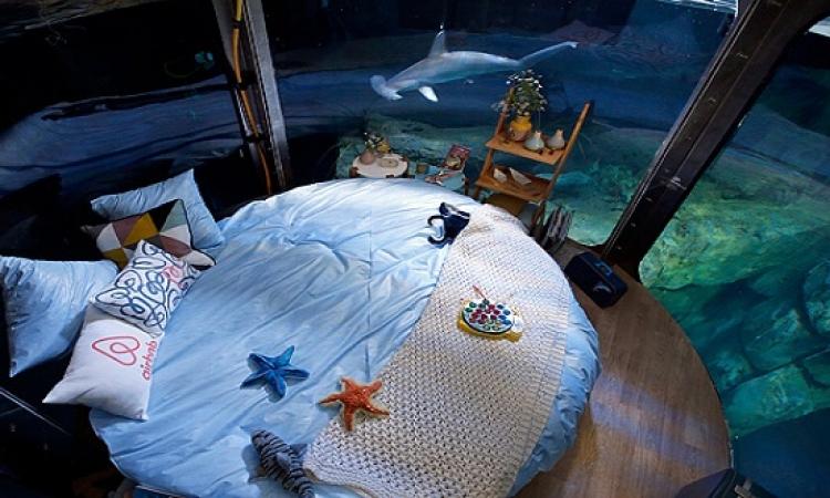 بالصور .. النوم وسط أحضان أسماك القرش بباريس !!