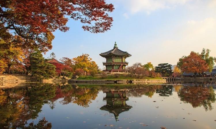 كوريا الجنوبية ..  متعة الطبيعة  وجنة الأساطير !!