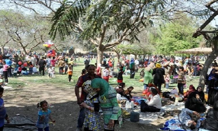 حدائق القناطر الخيرية تستعد لاحتفالات أعياد الربيع