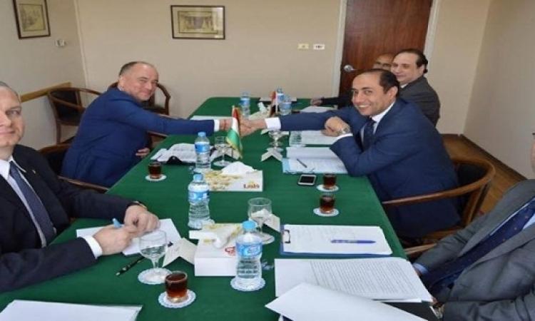 جلسة مشاورات ثنائية بين مصر والمجر
