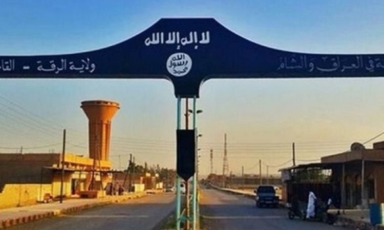 تقدم للقوات الكردية فى عملية تحرير معقل داعش فى سوريا