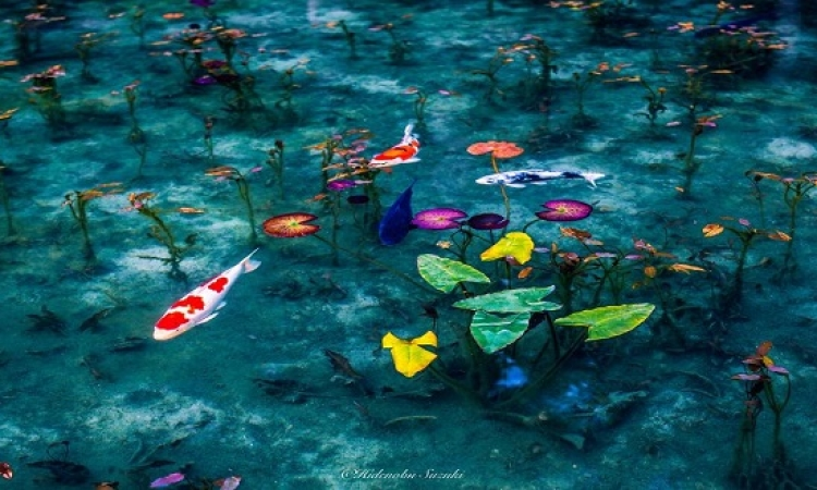 صور مذهلة للطبيعة اليابانية .. هتفتكرها لوحات مرسومة !!
