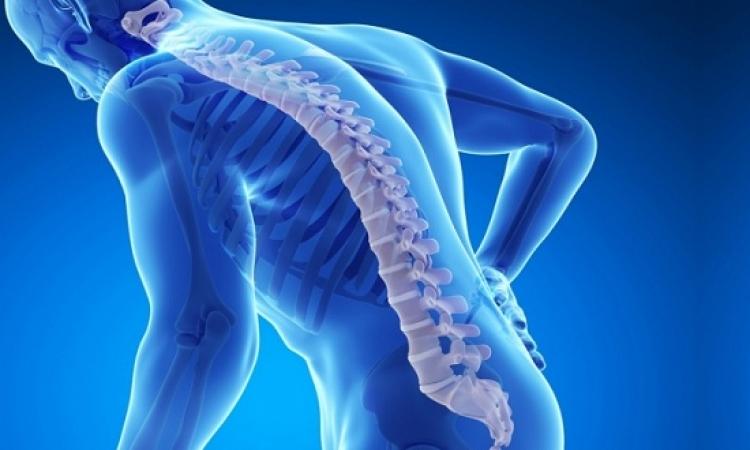 الوجبات اليومية للوقاية من هشاشة العظام