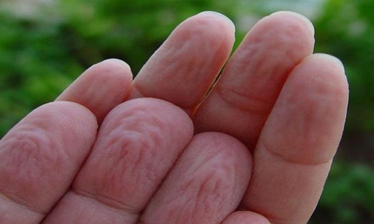 علماء بريطانيون يكتشفون سبب تجعد جلد أصابعنا فى الماء !!