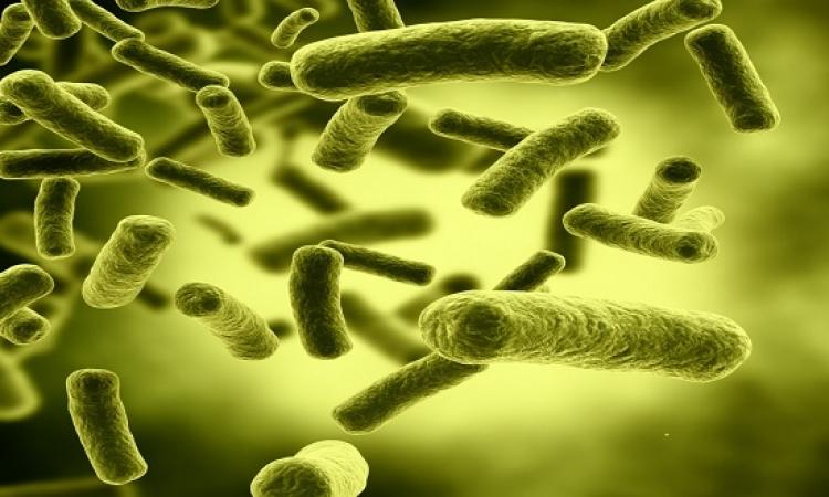 6 أنواع من الجراثيم تختبئ فى منزلك رغم التعقيم.. أهمها الموبايل ولعب الأطفال