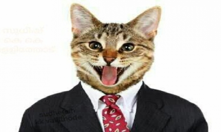 فيس بوك يعطل حساب مدون هندى بسبب صورة قطة!!