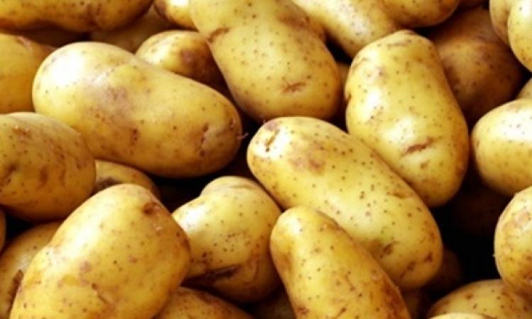 اخيراً .. روسيا تخفف الحظر على واردات البطاطس المصرية