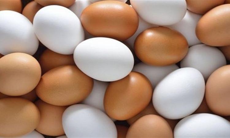 سبب ارتفاع سعر البيض الأحمر عن الأبيض