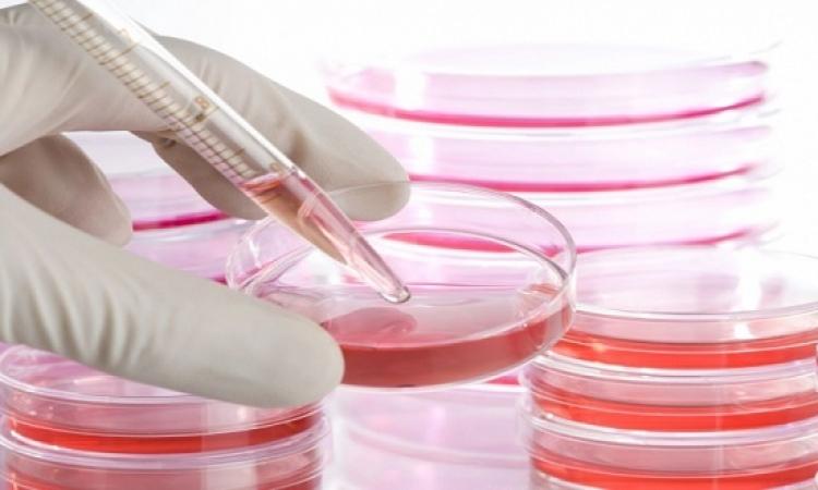 """الجديد فى مجال الخلايا الجذعية.. برعاية """"الطبية العسكرية"""""""