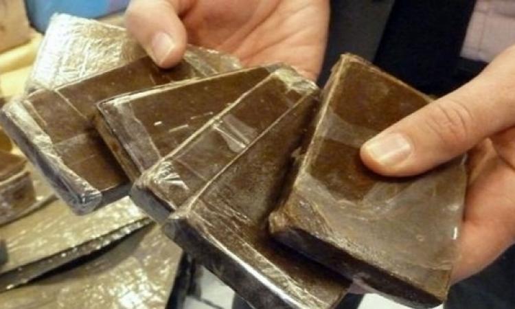 تجارة المخدرات تحصد نصف تريليون دولار.. والمدمنون يتزايدون