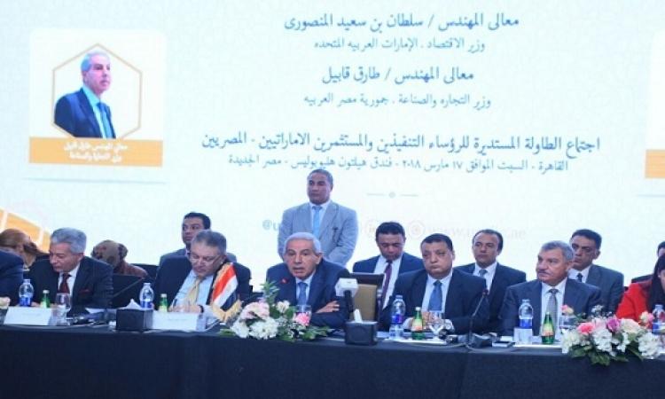 طفرة فى العلاقات الاقتصادية المصرية الإماراتية ومشروع جديد لتوليد الكهرباء