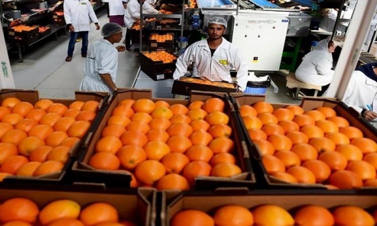 السعودية تصدر ضوابط استيراد الفواكه والخضروات من مصر