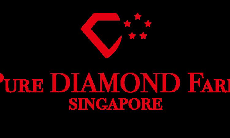 تكنولوجيا التعاملات الرقمية بلوك تشاين .. ابتكار جديد في قطاع المجوهرات