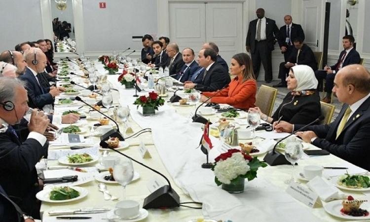 السيسى يستعرض التطورات فى مصر مع مجلس الأعمال للتفاهم الدولى
