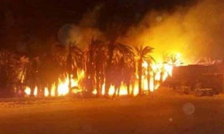 قوات الحماية المدنية تنجح في السيطرة على حريق قرية الراشدة بالوادي الجديد