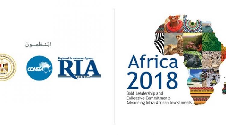 مكاسب وتحديات الشراكة المصرية الإفريقية