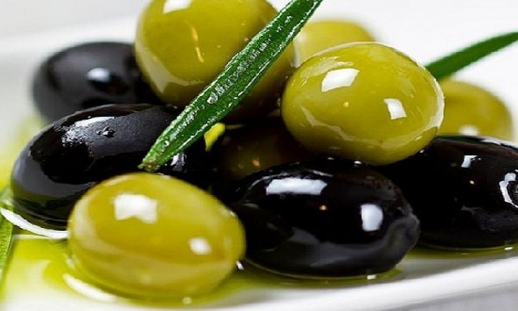 كيفية شراء وتخليل الزيتون الأخضر والأسود